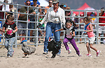From left, Kayleigh Gaudette, 5, Piper Colburn, 7, and Kloe Abbott, 5, compete in a chicken race at the 56th annual International Camel &amp; Ostrich Races in Virginia City, Nev. on Friday, Sept. 11, 2015. <br /> Photo by Cathleen Allison