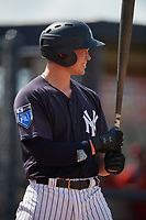 New York Yankees Josh Breaux (20) at bat during a Florida Instructional League game against the Philadelphia Phillies on October 11, 2018 at Yankee Complex in Tampa, Florida.  (Mike Janes/Four Seam Images)
