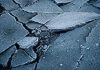 Cracked asphalt with frost from sea spray, Seward Alaska.