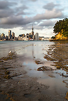 Auckland skyline seen across the harbour from Bayswater, Auckland, New Zealand North Island