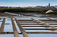 Europe/France/Pays de la Loire/44/Loire Atlantique/Batz-sur-Mer: Les Marais salants de Guérande