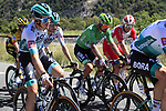 The peloton including Green Jersey Peter Sagan (SVK) Bora-Hansgrohe take it easy during Stage 5 of Tour de France 2020, running 183km from Gap to Privas, France. 2nd September 2020.<br /> Picture: Bora-Hansgrohe/BettiniPhoto | Cyclefile<br /> All photos usage must carry mandatory copyright credit (© Cyclefile | Bora-Hansgrohe/BettiniPhoto