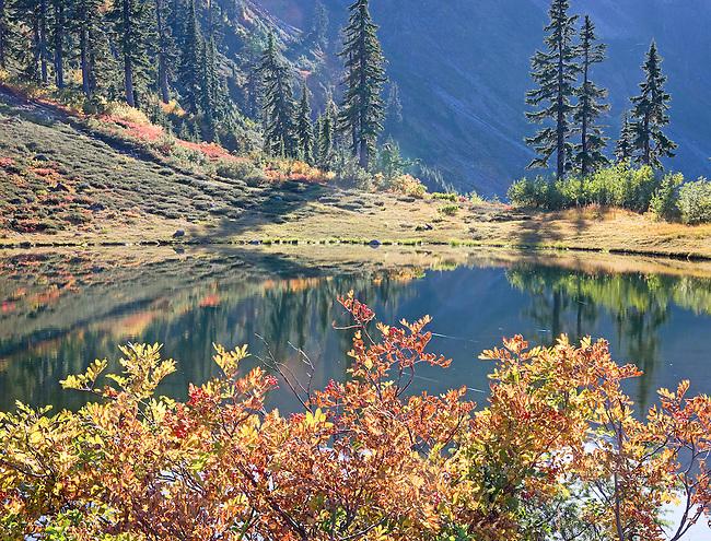 autumn colors around pond, Austin Pass, North Cascades Nat. Part, WA.