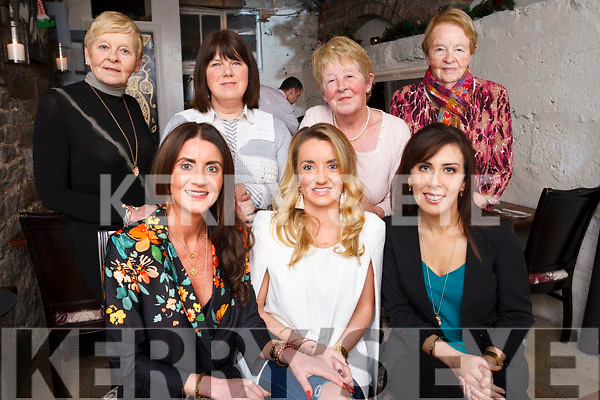 Denise Long and her Hen Party enjoy celebrations in the in Croi Restaurant, Tralee. <br /> Front L-R Evonne Long, Denise Long and Tracy Corridan.<br /> Back L-R Maime? Kelliher, Doreann O&rsquo;Sullivan, Joan Long and Eilleen Brosnan