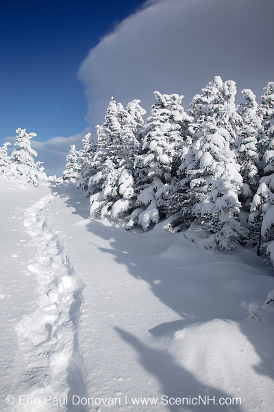 Appalachian Trail - Snowshoe tracks on the Carter-Moriah Trail in winter conditions near the summit of Carter Dome in the White Mountains, New Hampshire USA