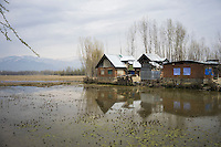 Intermittent rain and flood waters continue to water-log many of the villages devastated by floods and landslides last September, as seen here in Purnishadashah village, Jammu and Kashmir, India, on 24th March 2015. Flattened agriculture fields have left many villagers without livelihoods and in debt. Photo by Suzanne Lee for Save the Children
