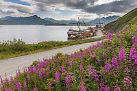 View overlooking Dutch Harbor and Iliuliuk Bay and Unalaska Island in the distance, Aleutian Islands, Alaska.