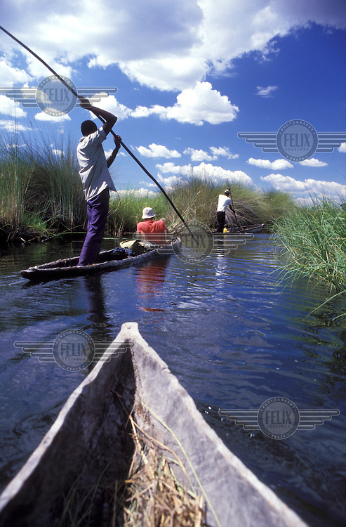 © Steve Thomas / Panos Pictures..Okavango Delta, BOTSWANA..Tourists being guided through the Okavango swamps by boat