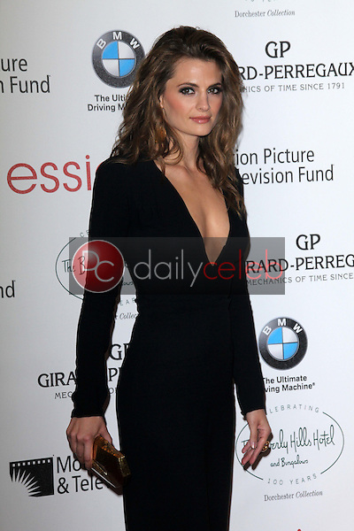 Stana Katic<br />