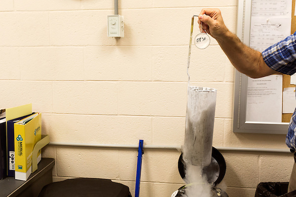 July 24, 2015. Candor, North Carolina.<br />  Hatchery manager Joe Steed removes vaccine from the liquid nitrogen bath they are kept in.<br />  Chicken producer Perdue Farms Inc. has become the first major poultry company to attempt to raise more than half of its flock with no antibiotics, human or for animals only. As demand for meats free of medicines has risen, Perdue has upgraded their facilities to increase cleanliness and sterility to allow the company to cut antibiotics out of the chicken hatching process.