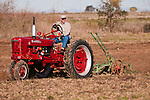 Antique tractors plowing a field in fall during the Branch 158 EDGE & TA Fall Plow Day and Plowing Seminar near Pleasant Grove, Calif...Silmer Scheidel Farm..C. 1950 Farmall Mod. H pulling plow