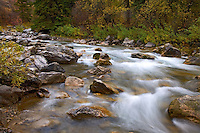 Fall colors, greys river, Alpine, Wyoming