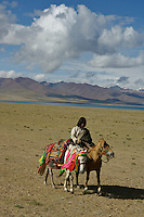 "Early morning Nomads on horseback at the edge of Namtso Lake.Namtso Lake  another holy lake in Tibet, is located near Damxung. 4718 meters (15475 feet) above sea level and covering 1900 square kilometers (735 square miles), the lake is the highest saltwater lake in the world and the second largest saltwater lake in China. The snow capped Mt. Nyainqentanglha, considered as the son of Namtso and leader of sacred mountains, soars up to sky beside her. Singing streams converge into the clean sapphire blue lake, which looks like a huge mirror framed and dotted with flowers..The Namtso Lake is held as ""the heavenly lake"" or ""the holy lake"" in northern Tibet. .Respected as one of the three holiest lakes in Tibet, the Namtso Lake is the seat of Paramasukha Chakrasamvara for Buddhist pilgrims. In the fifth and sixth month of the Tibetan calendar each year, many Buddhists come to the lake pay homage and pray. Deep tracks are worn into the lakeshore due to this activity. In history, monasteries stood like trees in a forest around the site, attracting large numbers of pilgrims as eminent monks in Buddhist temples extended Buddhist teachings...Buddhists believe Buddhas, Bodhisattvas and Vajras will assemble to hold religious meeting at Namtso in the year of sheep on Tibetan calendar. It is said that walking around the lake at the right moment is 100,000 times more efficacious than that in normal years. That's why thousands of pilgrims from every corner of the world come to pray at the site, with the activity reaching a climax on Tibetan April 15...Walking around the lake takes a week. Ritual walkers love to burn aromatic plants to raise smoke on Auspicious Island [explain this a little] and throw a piece of hada scarf into the lake as a token of fulfilled wishes. If the scarf sinks, it implies ones wish is accepted by the Buddha; if the scarf flows on the water or only half sinks, it means one has failed to be honest and something unhappy may lie ahead...On the four side"