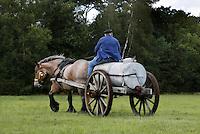 Leusden -  De Stichting Behoud Oude Werktuigen organiseert de jaarlijkse Oogstdag op landgoed Den Treek.  Paard trekt gierkar