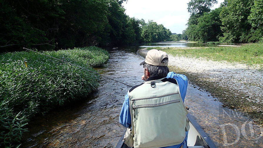 NWA Democrat-Gazette/FLIP PUTTHOFF <br /> Flat Creek is a short in length compared to other Ozark streams like the Kings or Elk rivers. Only about 22 miles of it is floatable, according to the Missouri Department of Conservation paddler's guidebook.