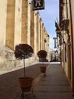 Historic Center in Cordoba, Spain.