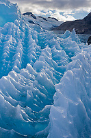 Glacier in Icebergs in Nellie Juan Lagoon, Prince William Sound, southcentral, Alaska.