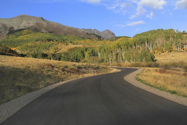 Road and autumn Aspen trees, near Telluride, Colorado,