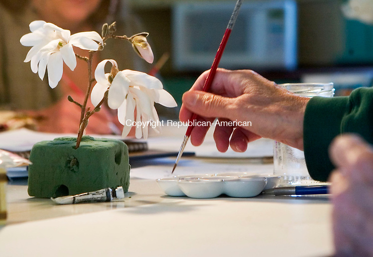 BETHLEHEM, CT- 24 APRIL 07- 042407JT21-<br /> Cathy Felten of Goshen picks a paint color during a watercolor workshop on magnolias taught by Rogers-Knox at the Bellamy-Ferriday House in Bethlehem on Tuesday, April 24. <br /> Josalee Thrift Republican-American