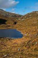 Hiker walking through autumn mountain landscape near lake Vikjordvatnet, Vestvågøy, Lofoten Islands, Norway