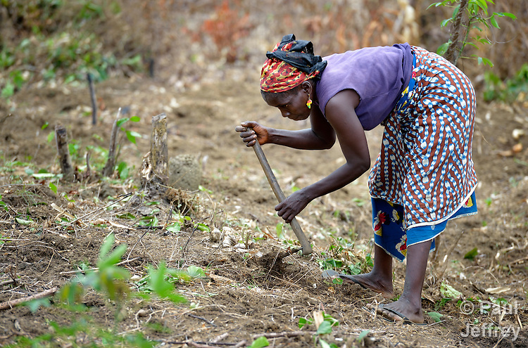 A woman prepares the ground for planting on a six-acre farm where several dozen women are farming cassava in Mount Barclay, Liberia. The income-generating project is administered by the National Federation of Women Employees and Allied Workers, with financial support from United Methodist Women.