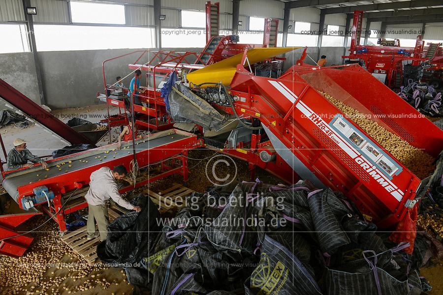 EGYPT, Farafra, potato farming in the desert, packing house of Daltex Corporation, sorting of potatos after harvest  / AEGYPTEN, Farafra, Daltex Corporation, Kartoffelanbau in der Wueste, Sortierung von Kartoffeln in der Packhalle