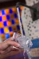 France, Gironde (33),Bassin d'Arcachon, Arcachon, Les Abatilles: Source Sainte-Anne des Abatilles, eau minérale  //  France, Gironde, Bassin d'Arcachon, Arcachon:  The Abatilles: Source Anne Abatilles, mineral water