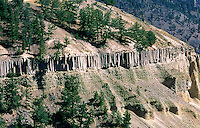 Basalt formations, Yellowstone National Park