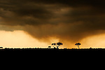 Africa  Kenya Masai Mara  Storm