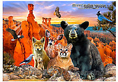 Howard, REALISTIC ANIMALS, REALISTISCHE TIERE, ANIMALES REALISTICOS, paintings+++++Bryce Canyon,GBHRPROV114,#A# ,puzzles