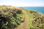 Coastal footpath near Trefin, Pembrokeshire Coast national park, Wales