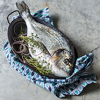 Daurade Royale  / Gilt-head bream - Stylisme : Valérie LHOMME