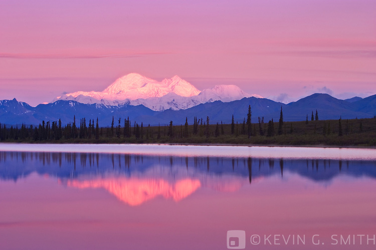 The north side of Denali reflected in a lake along the parks highway, summer, Alaska, USA