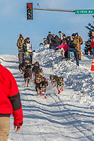 Richie Diehl on Cordova St. hill during the Anchorage start day of Iditarod 2018 on Cordova St. hill during the Anchorage start day of Iditarod 2019