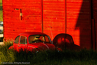 Old abandoned red Volkswagon car and shadow on red barn at sunrise, Palouse region of eastern Washington.