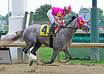 June 15, 2019: Doll Collection, a daughter of Groupie Doll, by Tapit, trained by Ralph Nicks, finished 2nd in a maiden special weight at Churchill Downs on June 15, 2019 in Louisville, KY. Jessica Morgan/ESW/CSM