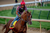 LOUISVILLE, KY - MAY 02: Flameaway workout on the track in preparation for the Kentucky Derby at Churchill Downs on May 2, 2018 in Louisville, Kentucky. (Photo by John Vorhees/Eclipse Sportswire/Getty Images)