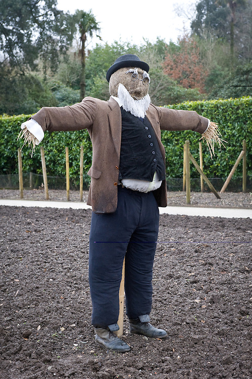 Scarecrow, Heligan, Cornwall, mid February.
