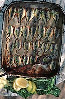 France/06/Alpes Maritimes/Nice/Arrière pays niçois: Détail d'un plat de sardines farcies d'ail et de persil