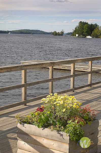 Planter box on dock