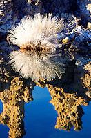 Tufo torens zijn zoutafzettingen die van oorsprong onderwater zijn gevormd.