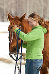 A young woman bridles her horse in Wilson, Wyoming.