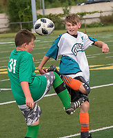 A full day of soccer was played at Norm Perry Park for members of the Sarnia South Soccer Tournament. Boys played in the morning while girls played the afternoon tournament. Here, Queen Elizebeth II School  Knights and P.E. McGibbon Grizzles play the semi-final round.