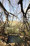 Golan Heights, Ein Kef in El Al nature reserve