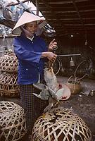 Asie/Vietnam/ env d'Hanoi/ Vong Bi: marchande d'oies sur le marché