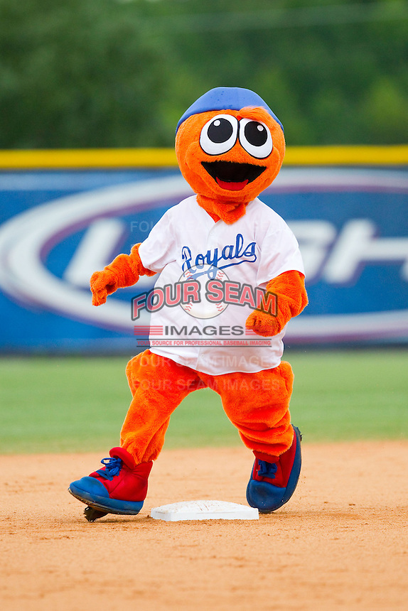 """Burlington Royals mascot """"Bingo"""" runs the bases between innings of the Appalachian League game against the Elizabethton Twins at Burlington Athletic Park on August 11, 2013 in Burlington, North Carolina.  The Twins defeated the Royals 12-5.  (Brian Westerholt/Four Seam Images)"""