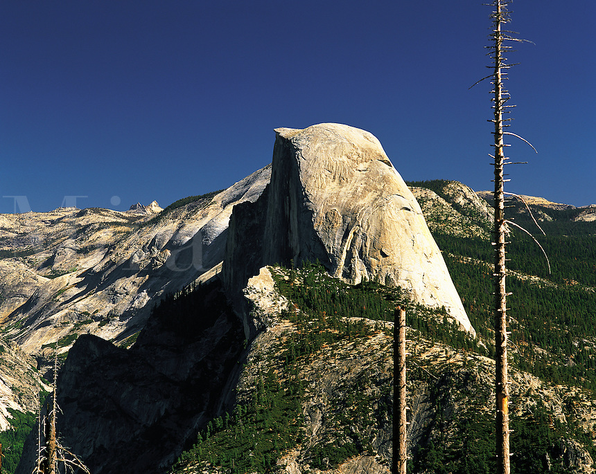 Half Dome rising above the sierras under a dark blue sky, from near Glacier Point, Yosemite Valley National Park, California, US