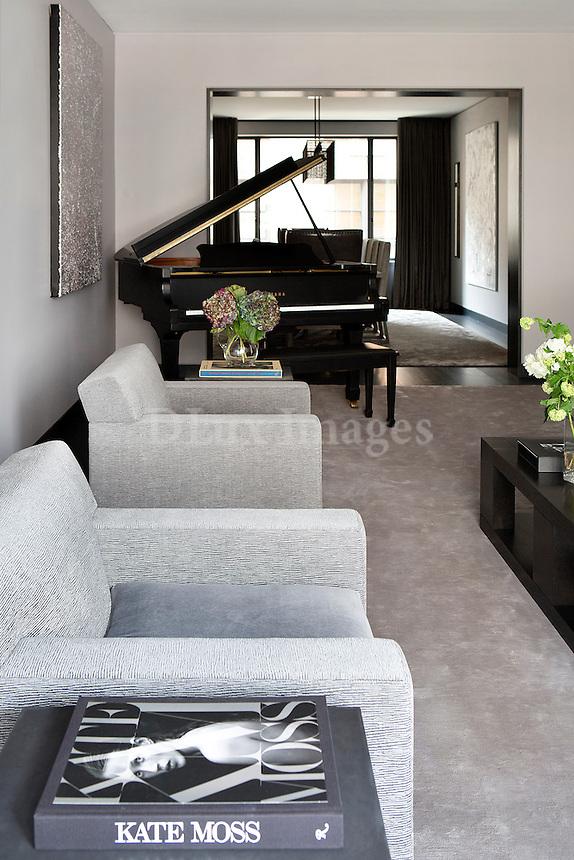 Modern gray armchairs