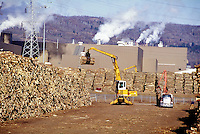 Wood being unloaded off trucks by a lift machine into piles before being processed into paper at Lake Superior Paper Company, Duluth, MN. Duluth Minnesota United States.
