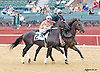 Stormy Holiday before winning at Delaware Park on 9/12/15